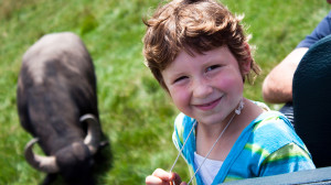 Checking out the Water Buffalo at Lake Tobias Wildlife Park